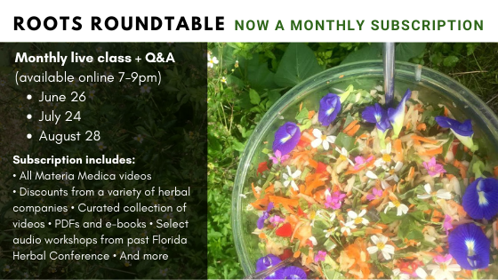 Roots Roundtable – July (June Make-up class)