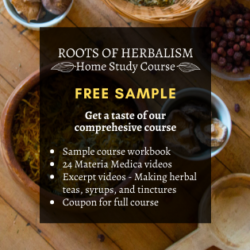 Roots of Herbalism Sample Class