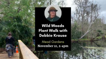 Wild weeds plant walk at mead garden